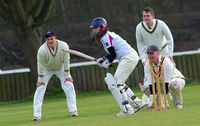 cricket-724615_640